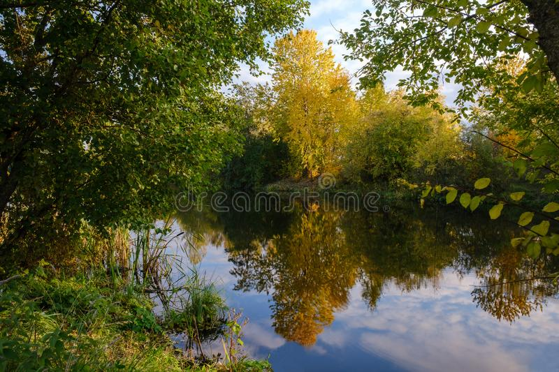 Trees in autumn colors on the coast of a quiet river in a forest at the beginning of october royalty free stock image