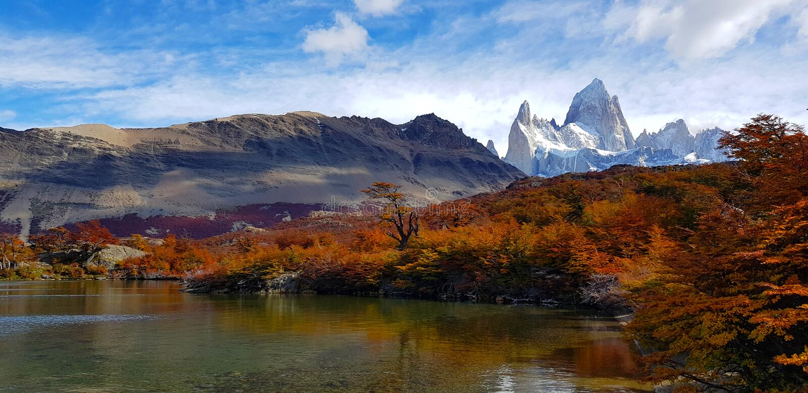 Trees with autumn colors and Mount Fitz Roy, Patagonia, Argentina stock image