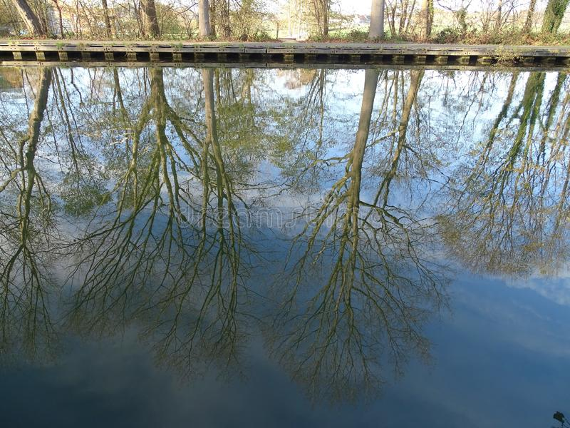 Trees reflection in the blue water. Trees in autumn colors reflections upside down in blue water royalty free stock image