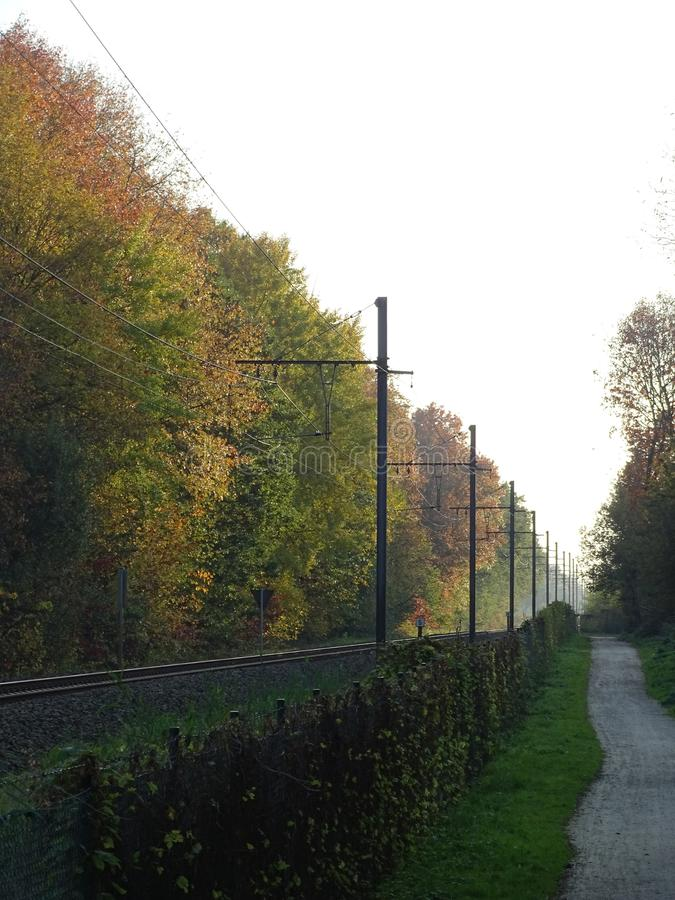 Trees in autumn colours beside the railway. And a bikers path at sunset royalty free stock photos