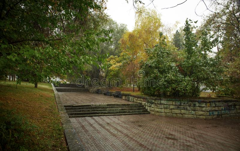 Trees in the park in the fall. Trees in autumn park in the rain stock photos