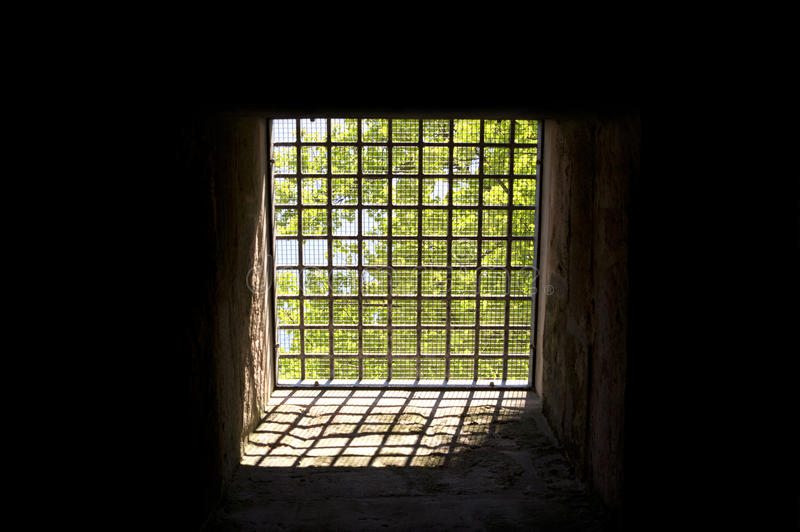 Download Trees behind bars stock photo. Image of light, hope, imprissonment - 27019834