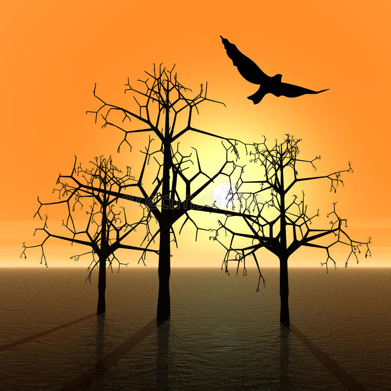 Trees and bird. Sunset stock photography