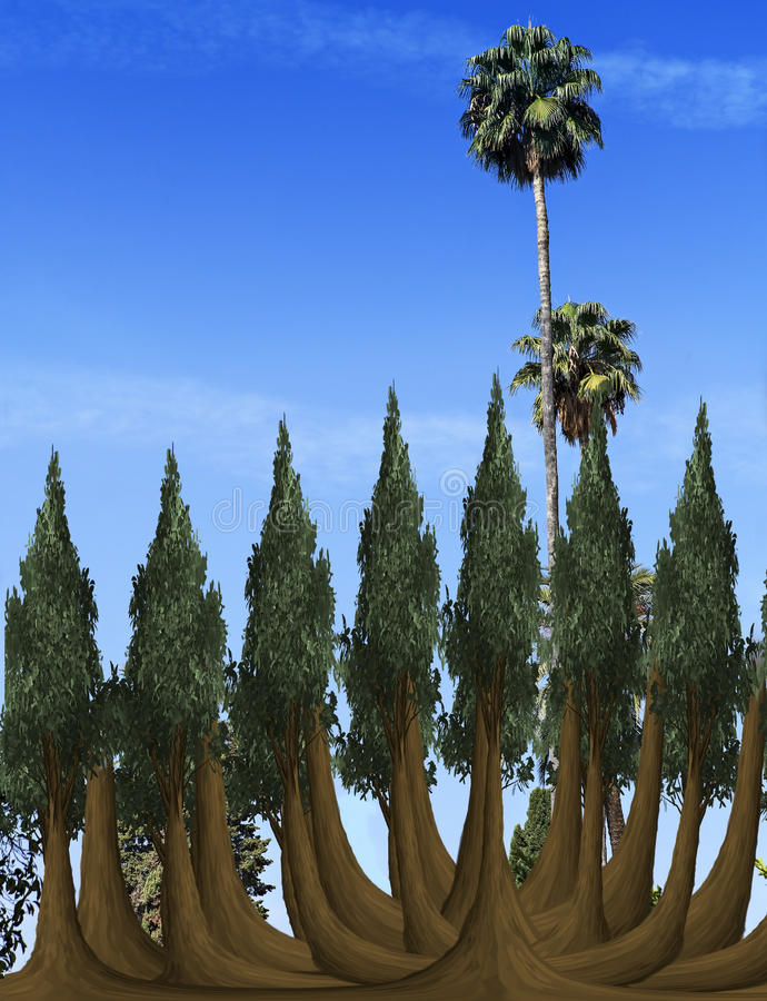 trees on blue sky royalty free stock photography