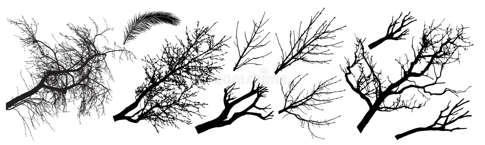 Trees branch silhouette set. Different types of trees branch. Vector illustration stock illustration