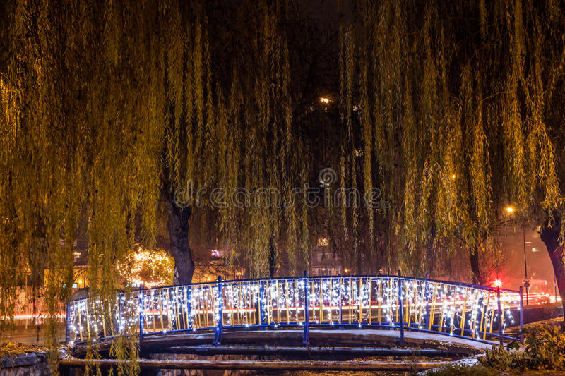 Trees and bridge before Christmas royalty free stock photography