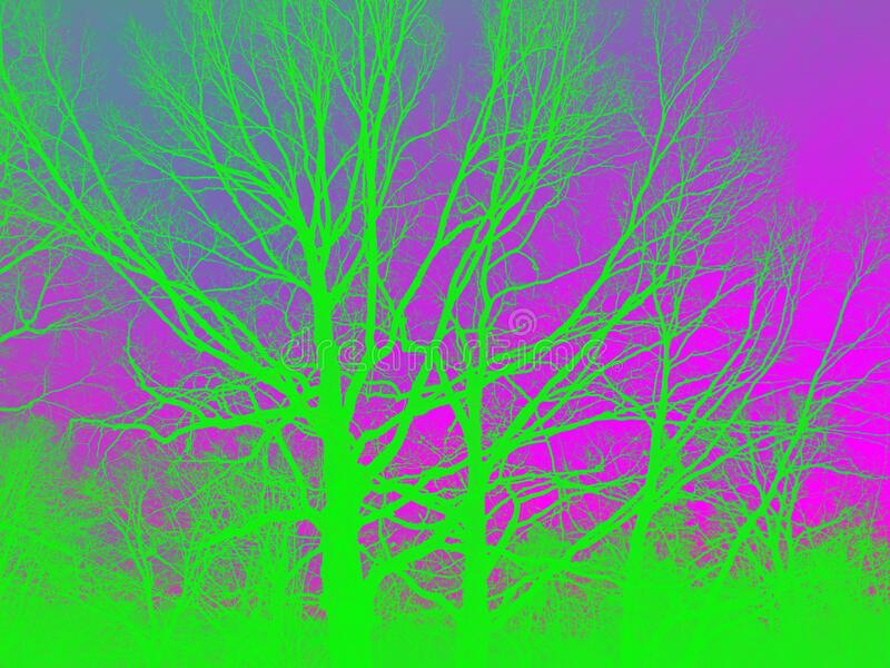 Trees in bright spectral colors green trees against the purple sky. royalty free stock photos