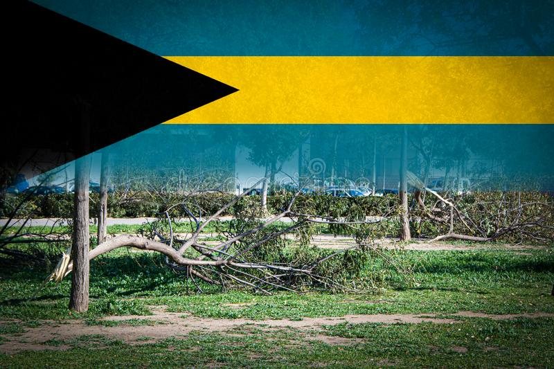 Trees broken by heavy storms and flag of Bahamas. Digital composition stock photography