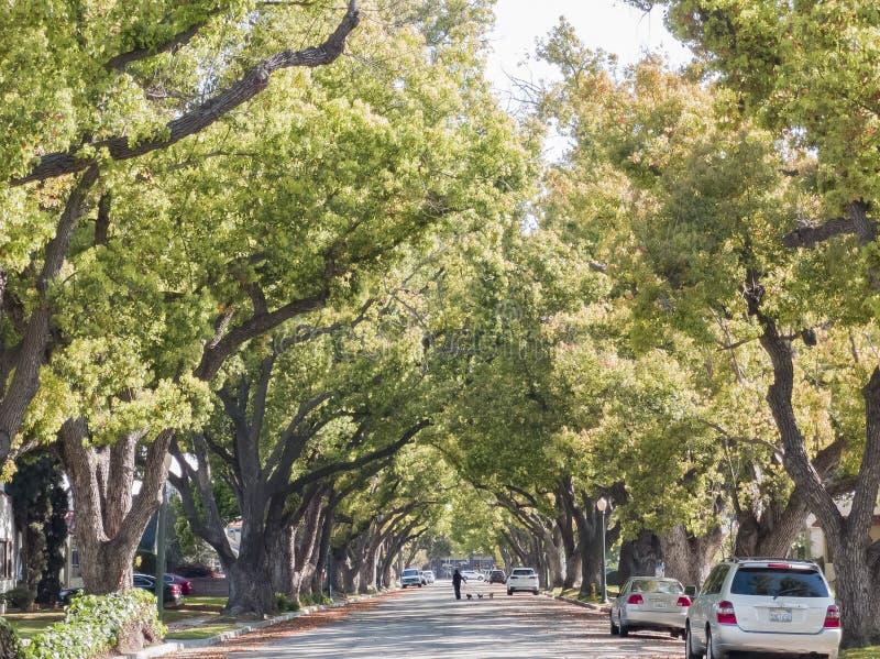 Trees, building, car of San Gabriel urban. San Gabriel, MAR 26: Trees, building, car of downtown on MAR 26, 2019 at San Gabriel, Los Angeles County, California royalty free stock image