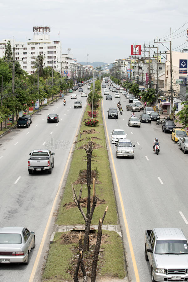 Trees in the city. Usually not grown the trees no growth because Be cut where they will not know its value When no at Songkhla, Thailand 8/08/2015 11:46 AM royalty free stock images