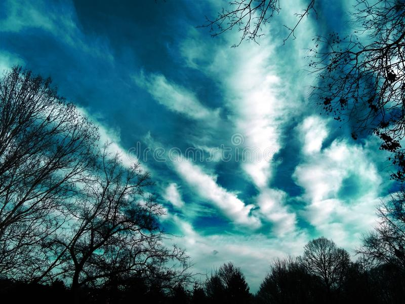 Trees and Clouds Photography royalty free stock photos