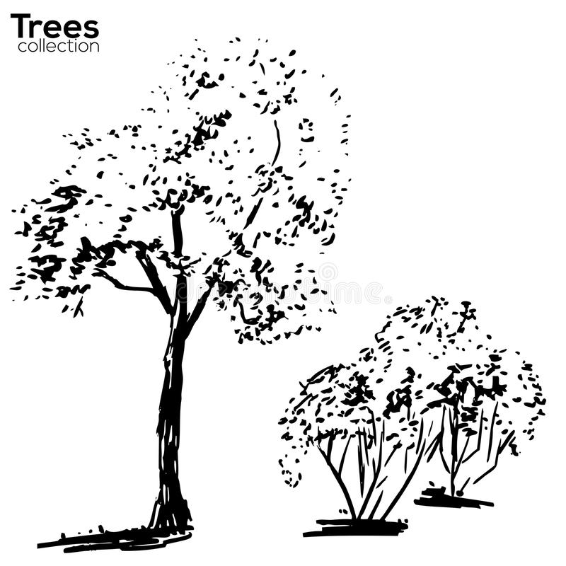 Trees collection. Ink trees silhouettes stock illustration