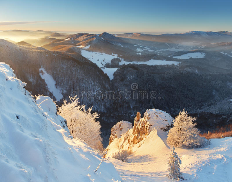 Trees Covered With Hoarfrost In Mountains Royalty Free Stock Photography