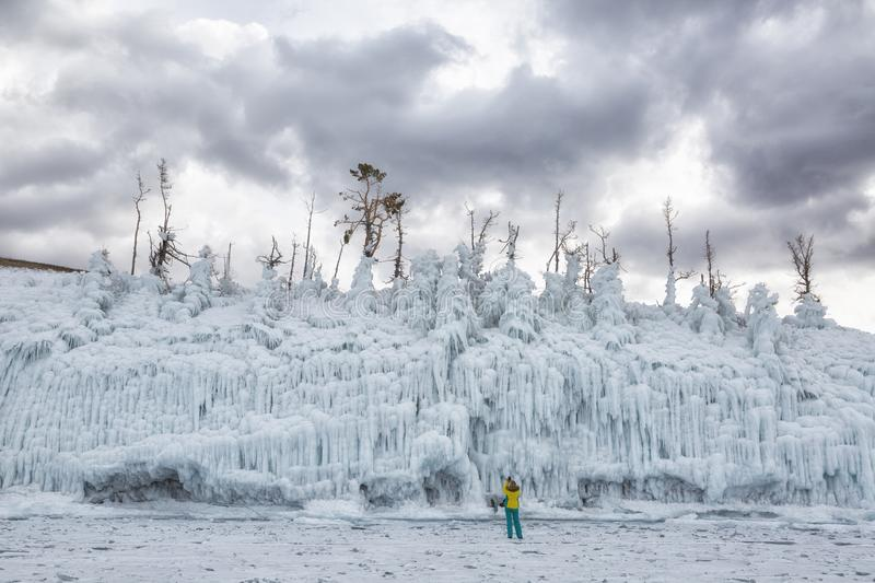 Trees covered with ice.  Russia royalty free stock image
