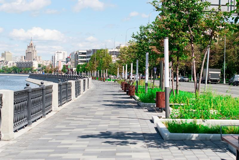 Trees on the embankment by the business city center. Trees along waterfront promenade with lanterns by the business city center at sammer day time. View of the royalty free stock images