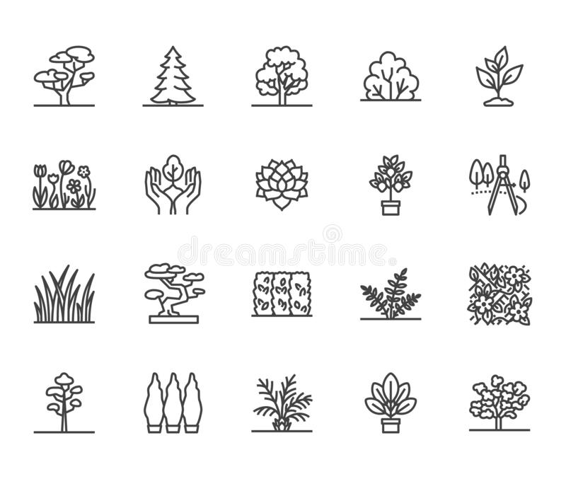 Trees flat line icons set. Plants, landscape design, fir tree, succulent, privacy shrub, lawn grass, flowers vector royalty free illustration