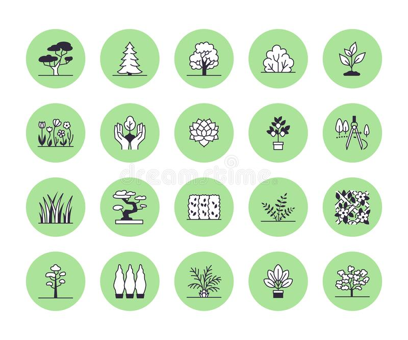 Trees flat line icons set. Plants, landscape design, fir tree, succulent, privacy shrub, lawn grass, flowers vector royalty free illustration