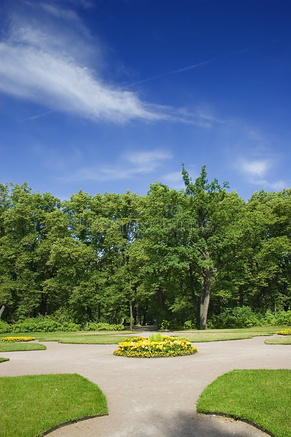 Download Trees and flower-bed stock image. Image of plants, plant - 5684169