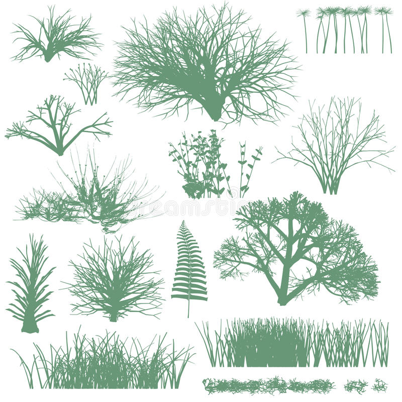 Trees And Grass Silhouettes Royalty Free Stock Image