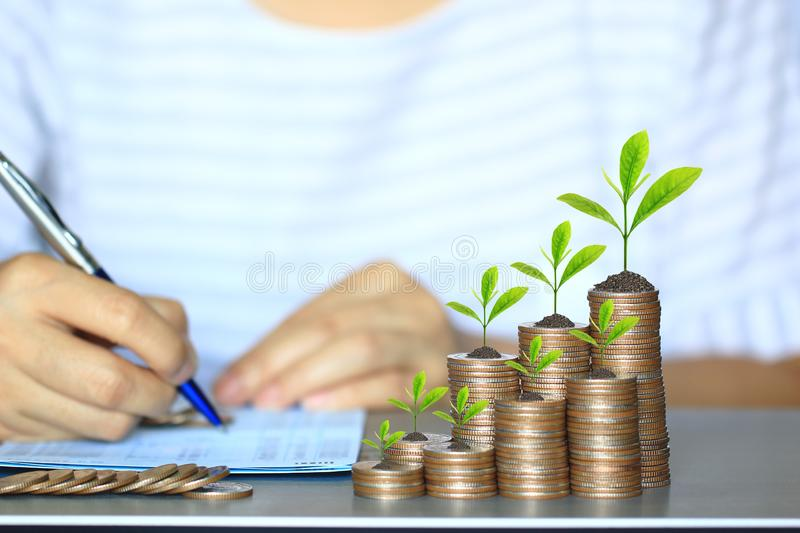 Trees growing on coins money and woman hand a pen on bank account passbook, Business investment and Save money for prepare in. Future concept stock image