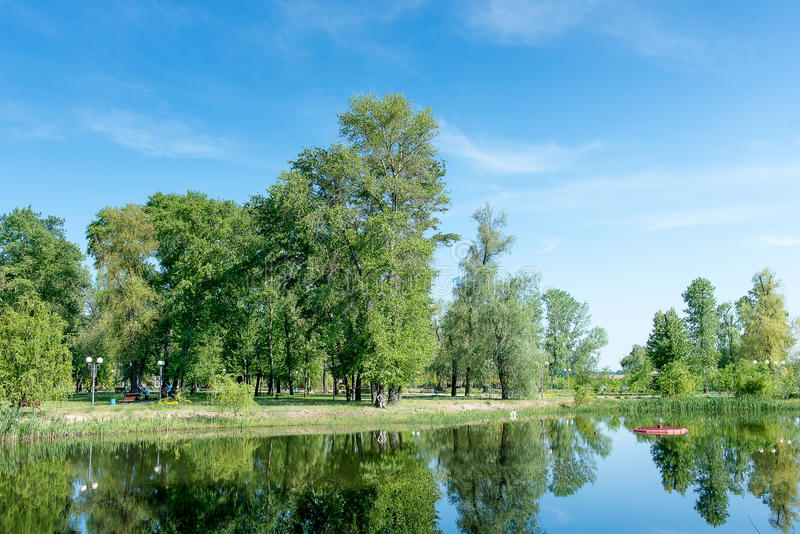 Trees growing near the lake in a park in spring. Spring landscape. Nice sunny weather. stock photography