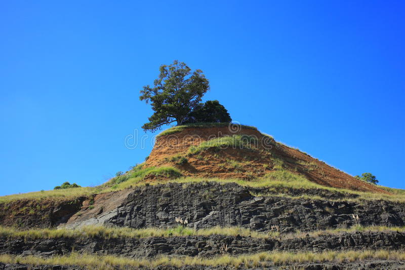Tree on hill of mining area. Tree on an isle of a hill in an Australian mining area - set against a clear blue sky stock image