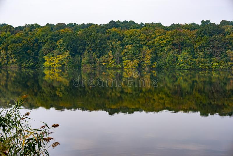 Trees and lake, perfect for meditation, in a beautiful autumn day. Fall landscape with tree silhouettes reflected in the water royalty free stock photography