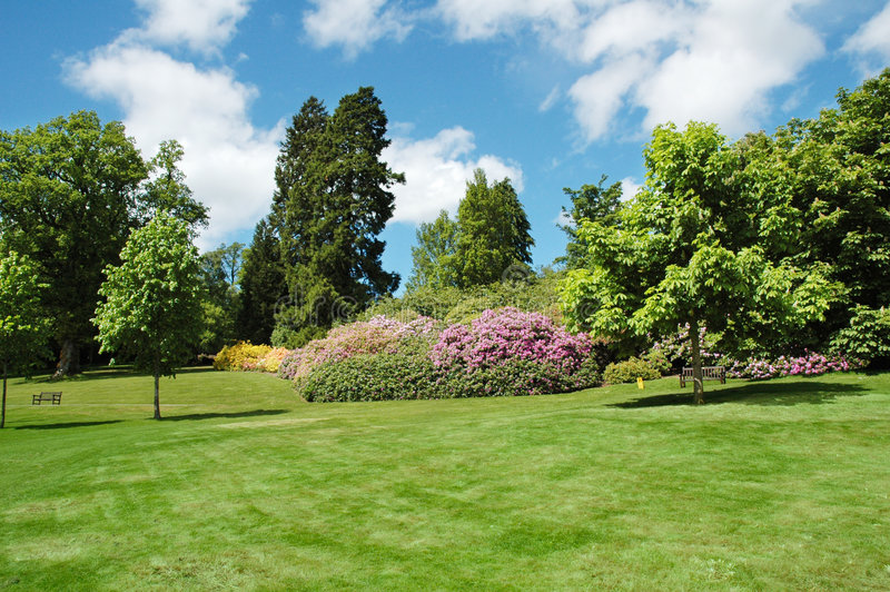 Download Trees And Lawn On A Bright Summer Day Stock Photo - Image: 1995550