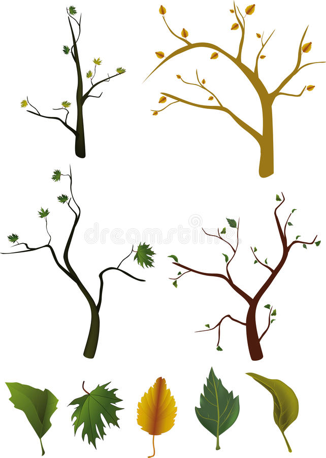 Trees and leaves royalty free illustration