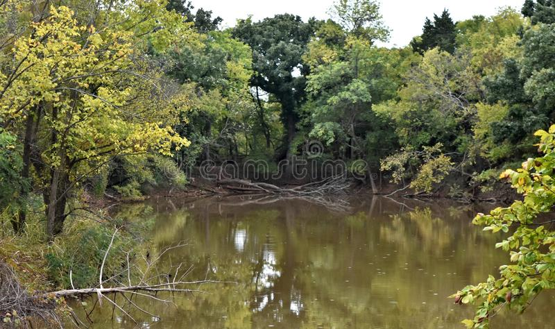 Trees lining the shore line at Martin Park, Landscape Photo. With a nice reflection of the still water. NW Oklahoma City royalty free stock image