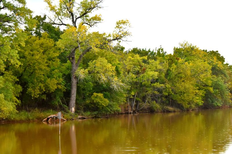 Trees lining the shore line at Martin Park, Landscape Photo. With a nice reflection of the still water. NW Oklahoma City royalty free stock images