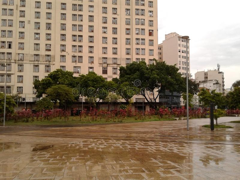 Trees in Maua square Rio de Janeiro Downtown Brazil. Trees in Maua square Rio de Janeiro Downtown. Square, rainy day, trees, cloudy sky, building, city stock images