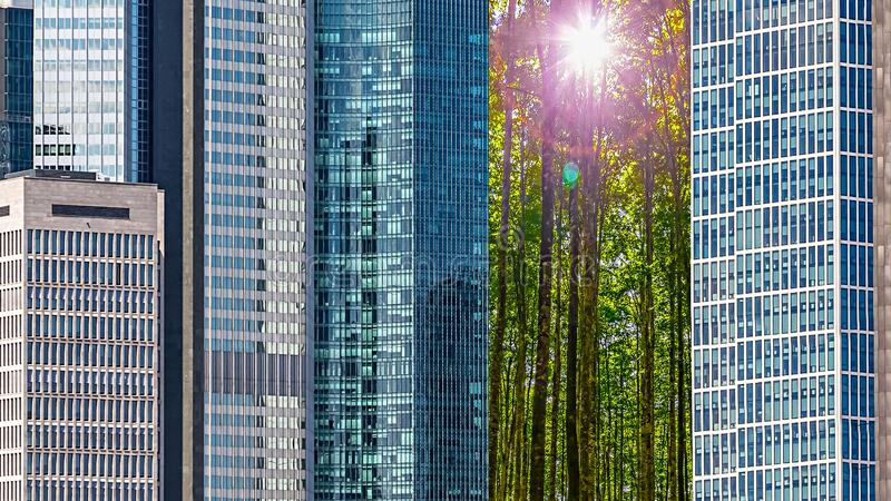 Green City Concept royalty free stock photo