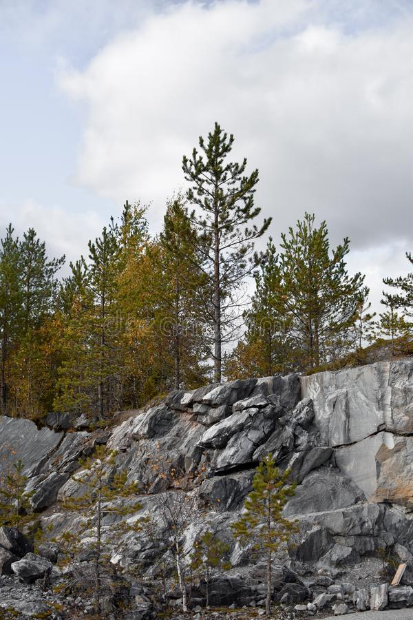The trees, the mighty rocks royalty free stock images
