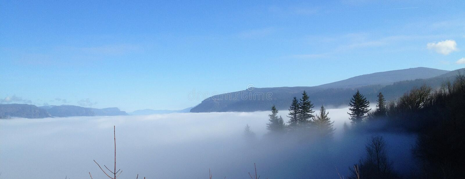 Trees and mountain peaking through mist in Portland, Oregon stock photography