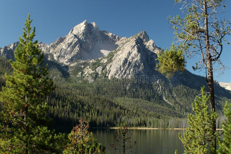 The majestic Mountains above Redfish Lake in central Idaho. Trees and a mountain vista reflecting in the waters of Beautiful Redfish Lake in central Idaho royalty free stock image
