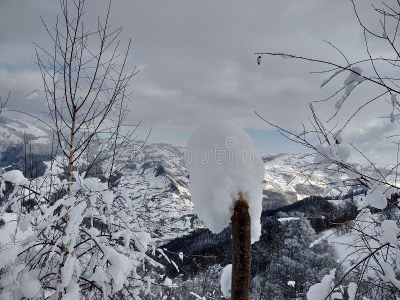Trees and mountains loaded with snow village of Parva, Romania, Transylvania. Winter landscape. Foto tomada en Enero 2019, en pueblo de parva Rumania Trasilvania royalty free stock image