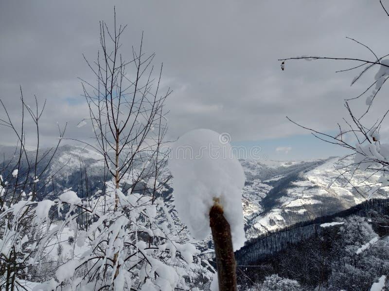 Trees and mountains loaded with snow village of Parva, Romania, Transylvania. Winter landscape. Foto tomada en Enero 2019, en pueblo de parva Rumania Trasilvania stock images