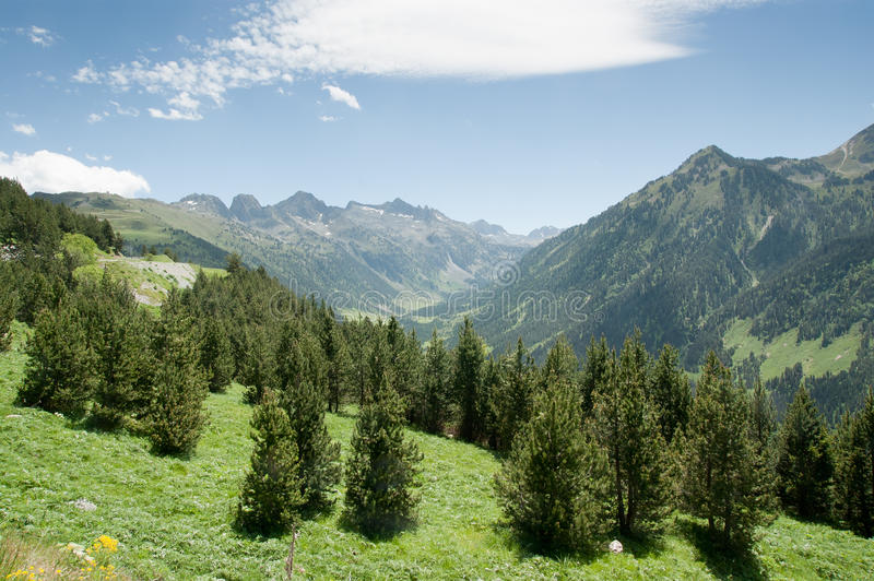 Trees and mountains of spain Pyrenees stock photo
