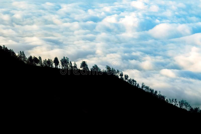 Trees on the mountainside against the background of storm clouds. Light and shadow.  royalty free stock photo