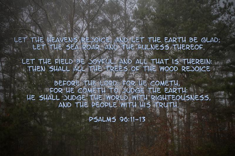 Trees of Nature Psalms 96 Bible Scripture. This is a picture of Ponderosa pine trees with the Psalms 96 bible scripture added stock images