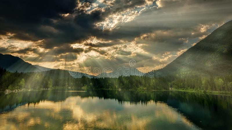 Trees Near Body Of Water Under Dark Clouds stock photos