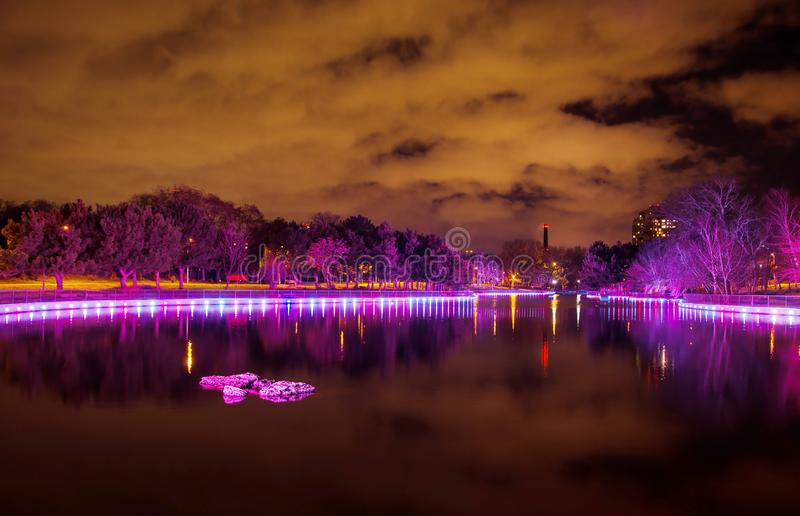 Trees in the park are purple. Colorful illumination of the lake in the late evening royalty free stock image