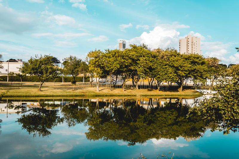 The trees of a park reflected on the water of a river, in the Ec. Indaiatuba, Brazil; 2018, july. The trees of a park reflected on the water of a rivel stock photos