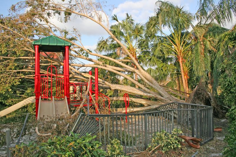 Trees and a playground are ripped up from Hurricane winds. royalty free stock photography