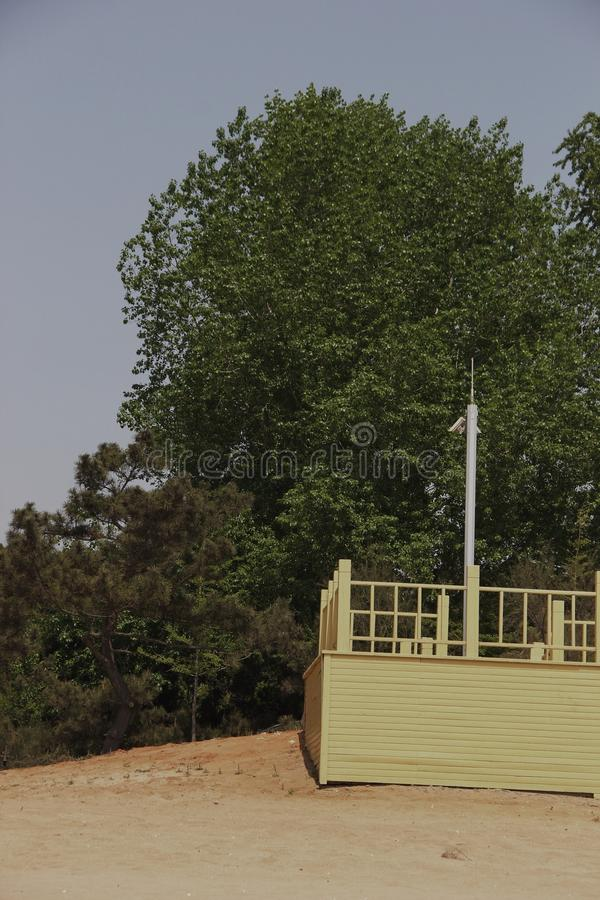trees and pole royalty free stock images