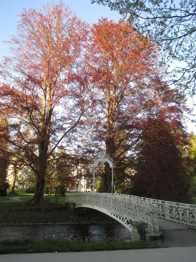 Scienic view at colorful trees and stylish, elegant bridge over small river at Baden-Baden Kurpark royalty free stock photography