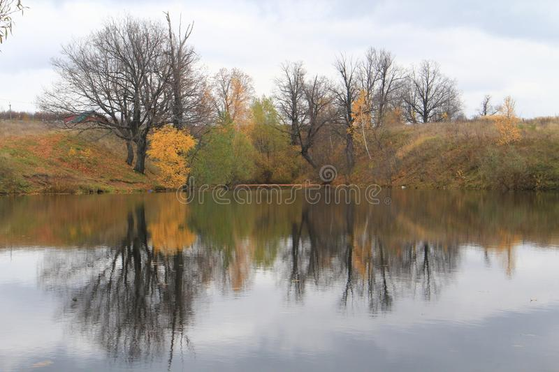 Trees are reflected in water. Trees growing on the shore are reflected in the water of the villages stock photo
