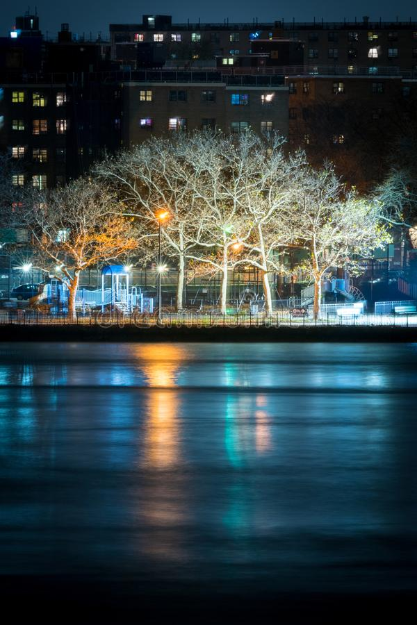 Trees reflecting in the East River, at night, New York City royalty free stock photography