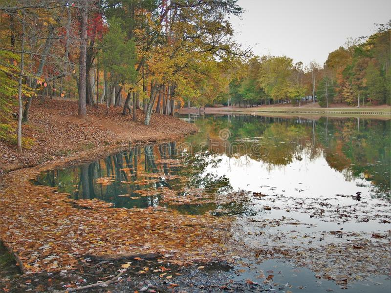 C. G. Hill Memorial Park. Trees reflecting in the lake at sunset. C. G. Hill Memorial Park in Pfafftown, North Carolina stock photography